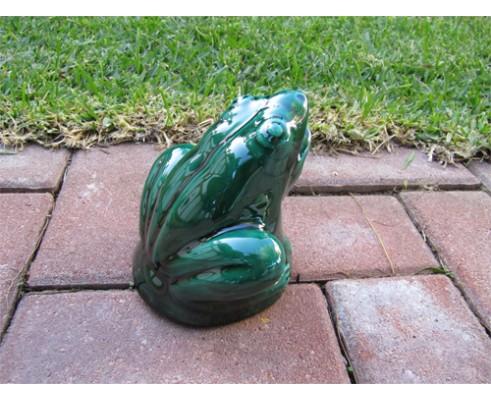 Rana esmaltada Verde