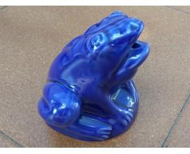 Rana esmaltada Azul